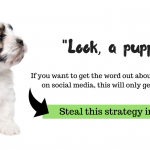 steal this social media client attraction strategy